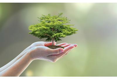 Understanding eco terminology