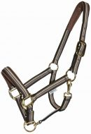 Equest Dual Plus Halter