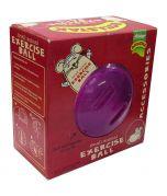 Armitage Small Animal Exercise Ball