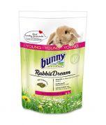 Bunny Nature Rabbit Dream Young