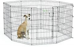 "MidWest Life Stages Exercise Pen with Full MAXLock Door 36"", Black"