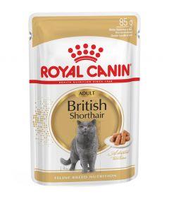 Royal Canin British Shorthair Wet Food