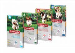 Advantix Dog 4 Pipette/Pack