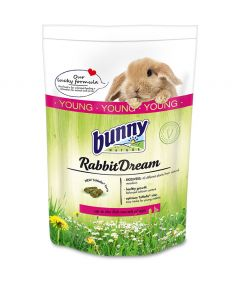 Bunny Nature Rabbit Dream Young
