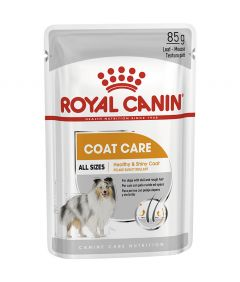 Royal Canin Coat Beauty Dog Wet Food Pouch