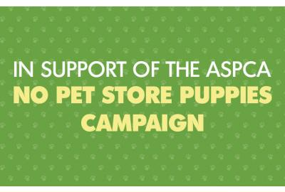 Why you should avoid buying pet store puppies