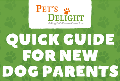 Quick Guide for New Dog Parents