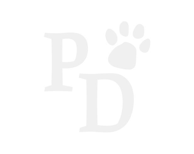 Rogz Cat Fishcake Bowl Black Paws
